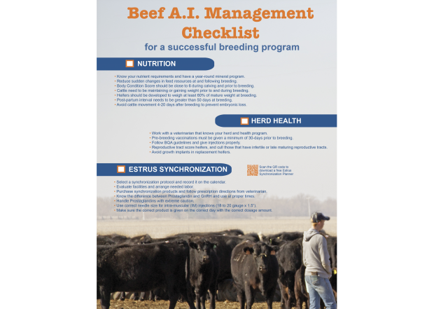 Beef AI Management Checklist
