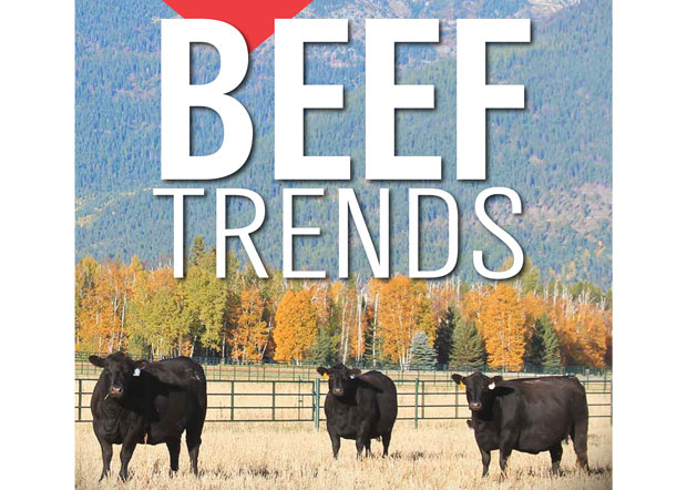 2016 Fall Beef Trends